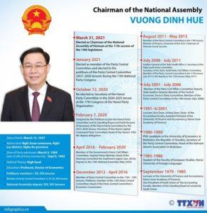 Profesor VUONG DINH HUE