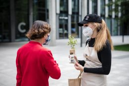Ernst and Young - Plants Giving Day